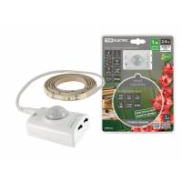 Подсветка умная SMD2835-30LED/m-IP20-5В-2,4Вт-6000К(1 м),датчик движ.и освещ.,акк. Li-Ion1100мАч TDM